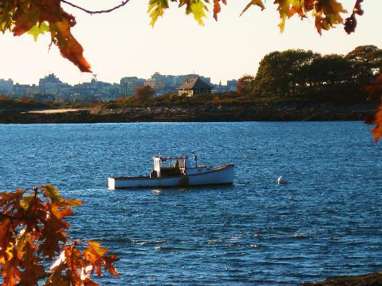 Peaks island picture of portland maine tripadvisor for 02 salon portland maine