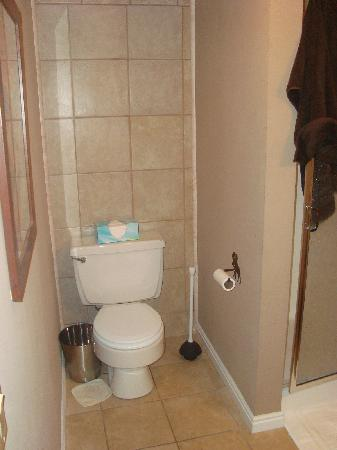 Snowblaze Condominiums: bathrooms and kitchen were clean (my towel on shower and floor)