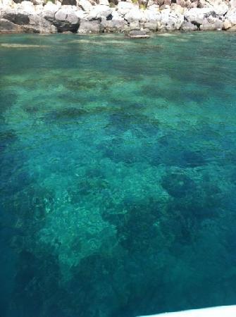 Vu's Tour Adventure : 2nd stop 4 snorkelling