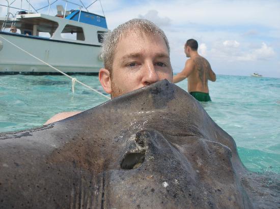 Carib Select Watersports & Photos: Kissing a stingray at Stingray City - Grand Cayman
