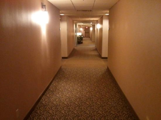 Crowne Plaza Airport: Hallway