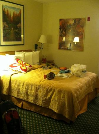 Quality Inn Oakland: Warm and fuzzy feeling..