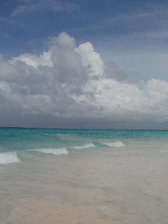 Pink Sands Beach: Pink Sand beach