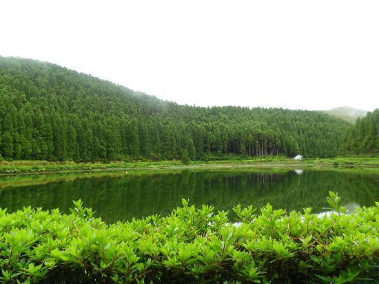 Azores Private Tours: Empadadas Lakes