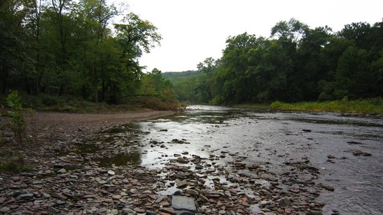 Pipersville, PA: Tohickon Creek Ralph Stover Park