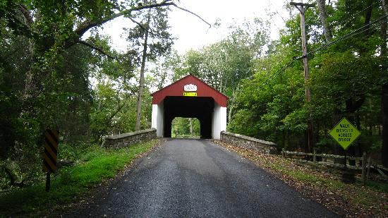 Ralph Stover State Park : Cabin Run Covered Bridge
