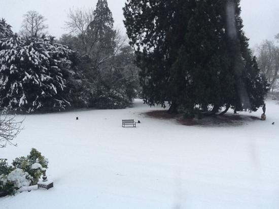 Taplow House Hotel: Snowy view from Room 2