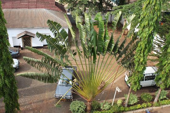 Kilimanjaro Crane Hotels & Safaris: View from the roof