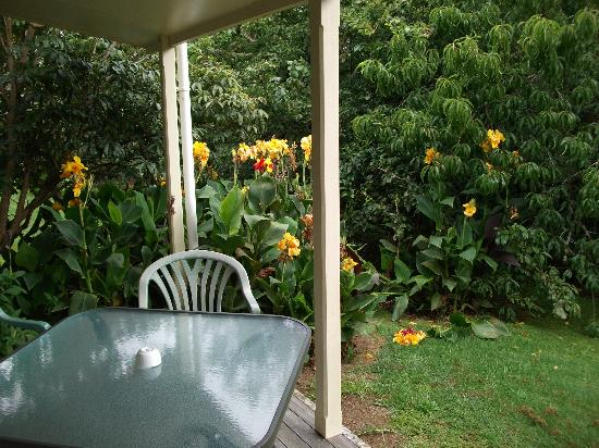 Kauri Park Motel: Our deck