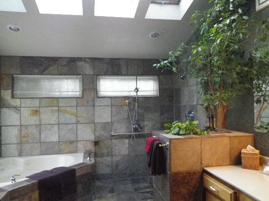 Country Willows Bed and Breakfast Inn: Open area shower, nice for ADA needs