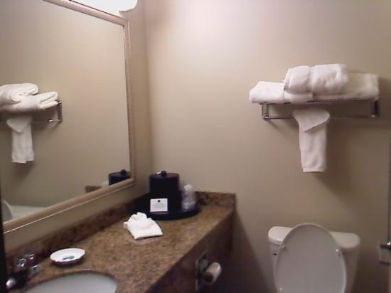 Best Western Chicago Southland: Bathroom