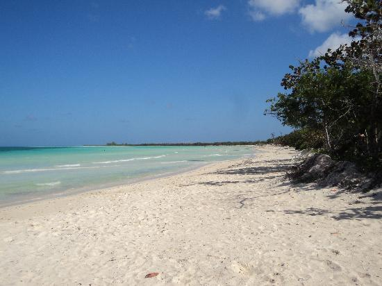 Hotel Playa Coco: La Playa :)