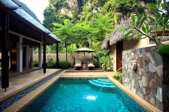 The Banjaran Hotsprings Retreat: In Villa Private Plunge Pool