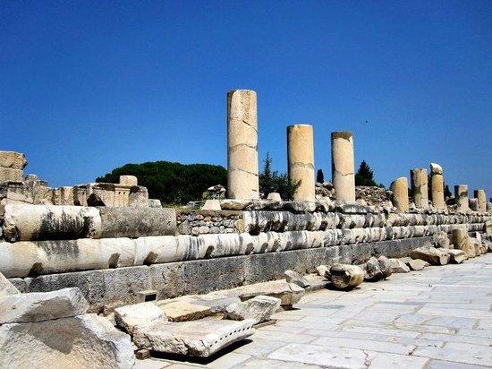 Ancient City of Ephesus: EFESO3\