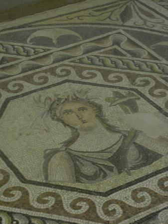 Gaziantep Zeugma Mozaik Müzesi: Prototype2