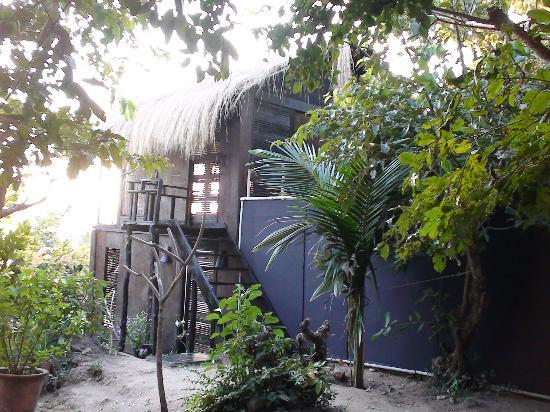 The Turtle Lounge: The Bungalow