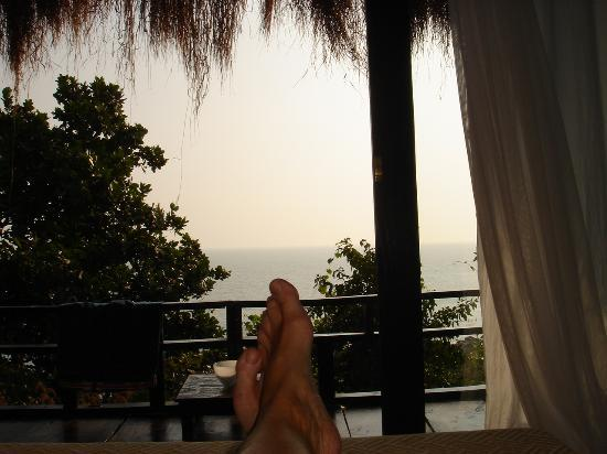 The Turtle Lounge: The View from the Bed