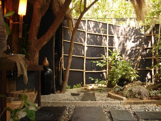 The Turtle Lounge: The Bathroom