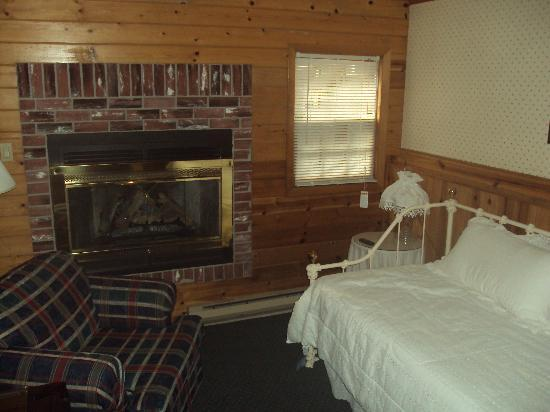 The Chandler Inn: The fireplace and day bed in the sitting room