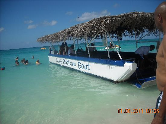 Seven Mile Beach: Glass bottom Boat, Grand Cayman