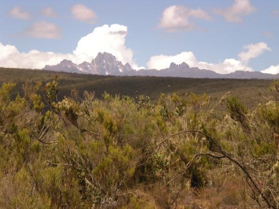 Rutundu Log Cabins: Great views of Mt. Kenya