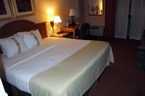 Holiday Inn South Plainfield - Piscataway: Standard Room