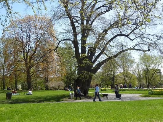 Washington Park : A nice place to picnic