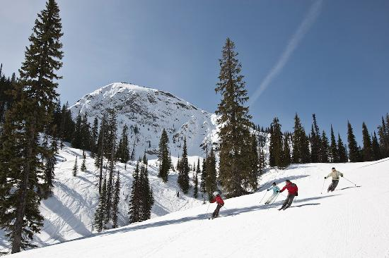 Family Skiing at Fernie Alpine Resort