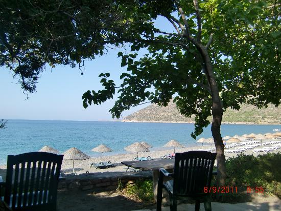 Özdemir Pansiyon: The view from the breakfast table of the hotel
