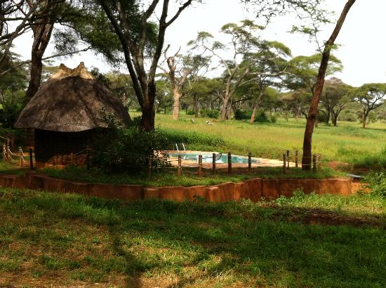 斯瓦拉保護區營地照片