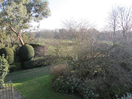 Grayshott Medical Spa: view from my bedroom