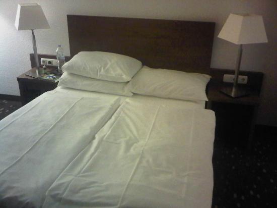Quality Hotel Erlangen: Room