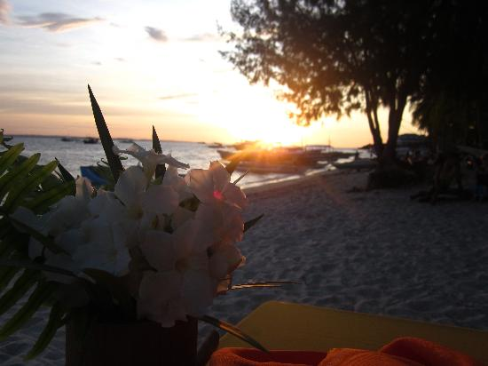Ocean Vida Beach & Dive Resort: Flowers, sunset and a lovely arrangement by Sven and his crew!