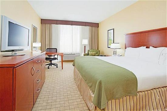 Holiday Inn Express Denver Airport: Spacious King Bed