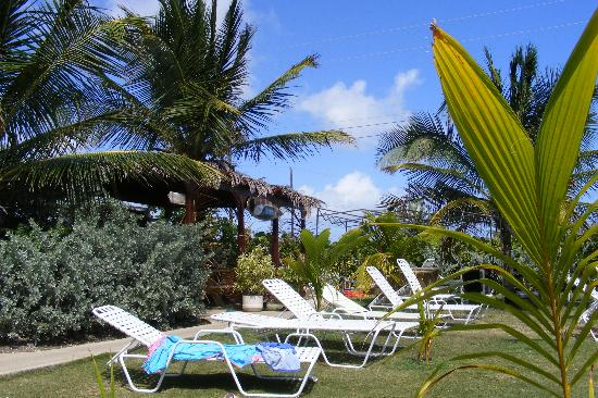 Divi Southwinds Beach Resort: Zed's Surf shop