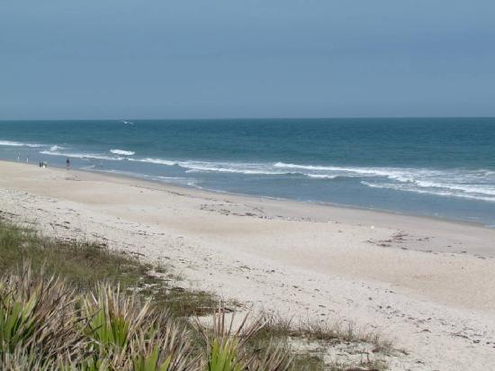 Canaveral National Seashore: Playalinda beach