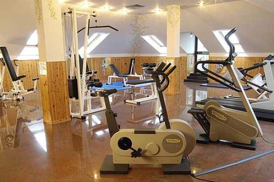 Hotel Excelsior Magenta: Fitnessroom