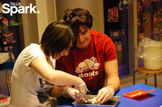 TELUS Spark: Disecting in the Creative Kids Museum