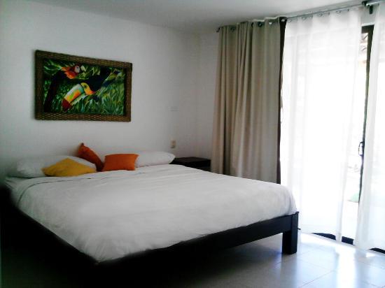 Hotel Villas Playa Samara: Room