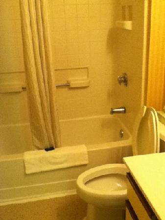 Extended Stay America - St. Louis - Earth City: The bathroom