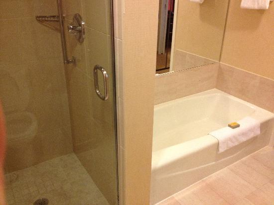 Chicago Marriott Suites O'Hare: the bath