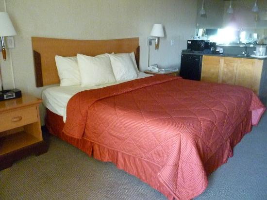 Comfort Inn and Suites: King Suite