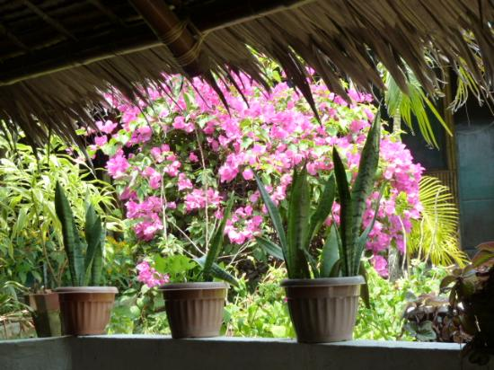 Palmera Garden Hotel and Resort : The Restaurant has a lovely view.