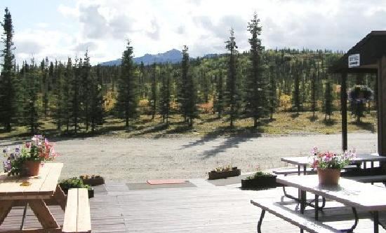 White Moose Lodge: View from our deck.