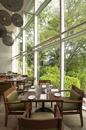 Hyatt Regency Villahermosa: VILLA_P151 Restaurant