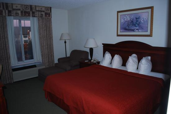 Quality Inn Duluth : Nice big confortable bed