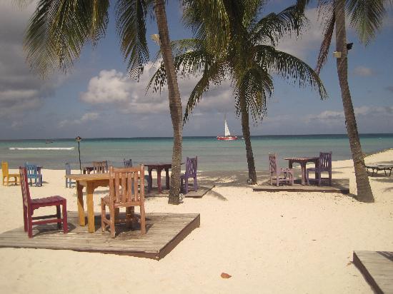 Breakfast with a view divi resort picture of divi aruba phoenix beach resort palm eagle - Divi aruba beach resort ...