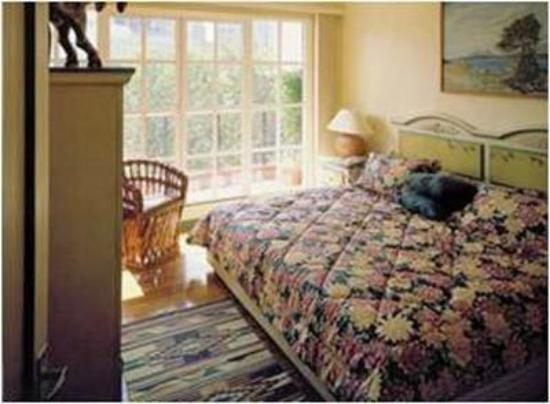 Residencia Polanco : Guest Room