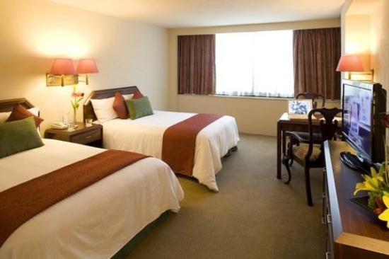 La Joya Pachuca: Double Guest Room