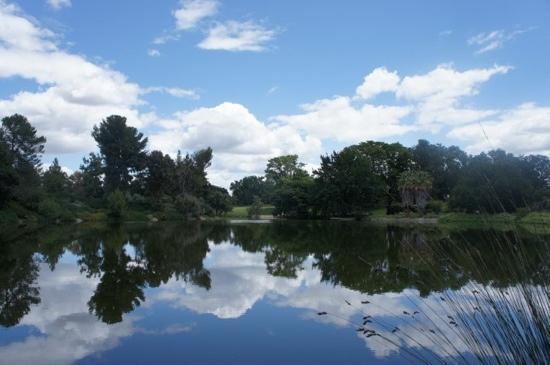 เดวิส, แคลิฟอร์เนีย: UC Davis arboretum 2011